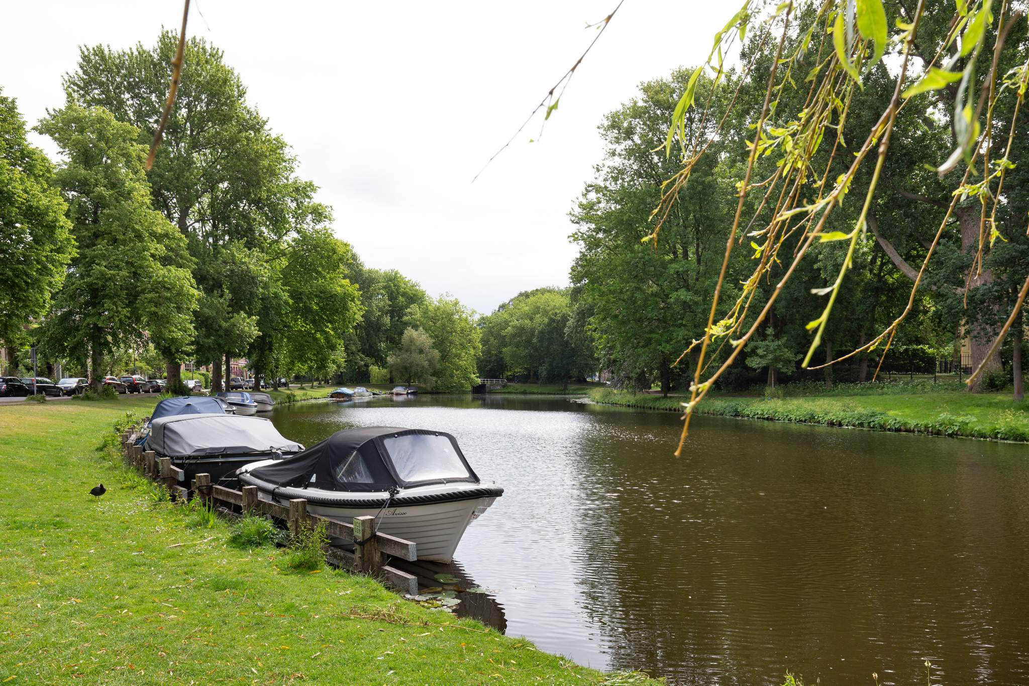 Molijnstraat 6